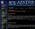 Obraz uwieczniający moją stronę o toruńskim Apatorze